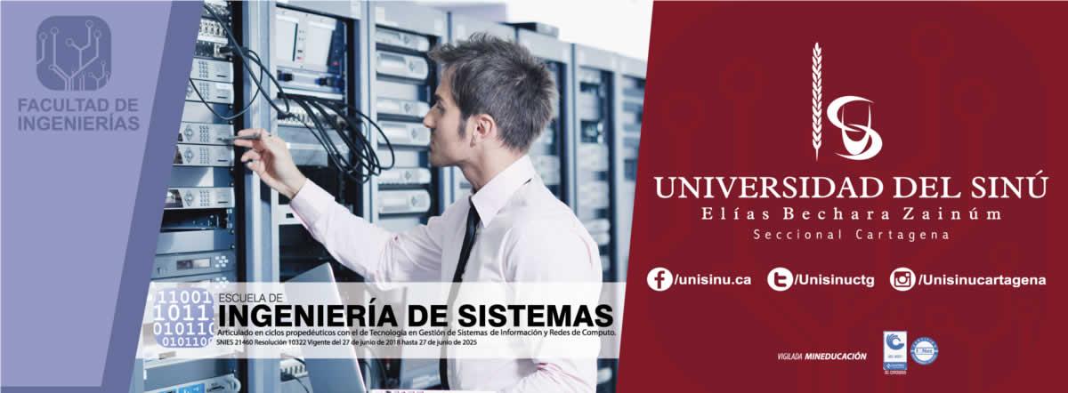 Ingeniería de Sistemas - SNIES:21460
